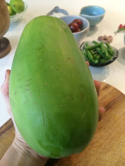 Lauren-Burns-Green-Papaya-1small
